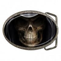 Dark Skull Raiders